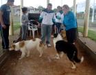 Campanha de controle de população canina e felina ocorre neste sábado em Osório