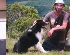 Cães perdidos são procurados em Osório