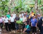 Evento visa melhoria da Cadeia Produtiva da Banana em Santo Antônio da Patrulha