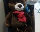 Mais um urso furtado da praça é recuperado em Osório