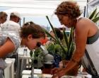 Litoral contará com atividades de educação ambiental