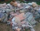 Dez toneladas de alimentos impróprios foram apreendidas em uma semana no litoral gaúcho