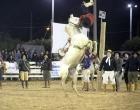 Rodeio de Osório: Uruguaio Victor Hernandes venceu a Liga dos Campeões na gineteada