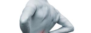 O tratamento da dor lombar através da Quiropraxia  - Por Thalles Zeni