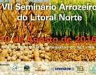 Litoral Norte sedia o sétimo seminário sobre arroz