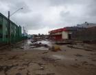 Ciclone: prefeitura recolhe animais mortos após ressaca do mar em Cidreira