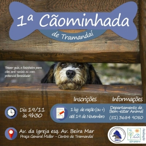 1a-caominhada