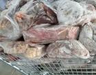Cidreira: aproximadamente 450 kg de alimentos são inutilizados em nova ação do Programa Segurança Alimentar
