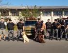 Homem é preso por tráfico de drogas em Tramandaí
