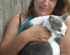 PRF resgata e devolve a sua dona dois gatos após acidente de trânsito na BR-101