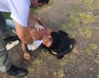 Homem com crise convulsiva é salvo por policiais na ERS-040