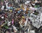 Fiscalização apreendeu mais mil óculos e diversos outros produtos em Capão da Canoa