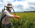 Audiência pública em Osório debate o impacto dos agrotóxicos na saúde e meio ambiente