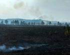 Incêndio em área às margens da Estrada do Mar chama atenção de moradores em Osório