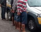 Quatro são presos após atacarem comércios na RS-030