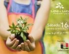Lima & Lucas Administradora de Imóveis realiza distribuição de mudas de bergamoteiras e pitangueiras