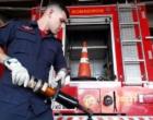 Corpo de Bombeiros de Osório recebe equipamento utilizado em acidentes de trânsito