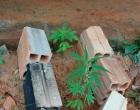 Homem é preso por tráfico de drogas após agredir mulher em Arroio do Sal