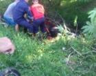 Bombeiros resgatam cavalo atolado em valo de Tramandaí