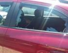 Cão morre ao ficar preso dentro de carro no Litoral