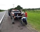 Foragido da justiça é preso empurrando cadeira de rodas às margens da RS-040