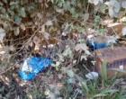 Preso no Litoral Norte, suspeito de participar do ritual com morte de crianças