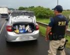 PRF recupera veículo clonado e roubado na BR-101