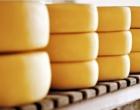 Câmara aprova venda de queijos artesanais para outros estados