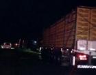 Caminhão tomba e bloqueia BR-101