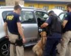 Pai e filho são presos com 31 quilos de cocaína na Freeway