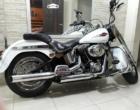 Criminoso arromba portão de prédio e furta Harley Davidson em Osório