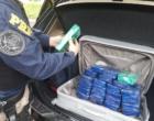 Osório: criminosos são flagrados com diversos tabletes de crack em BMW