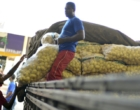 Entidades de produtores são contra tabelamento dos preços de frete