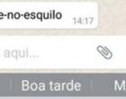 Emoji de esquilo provoca falha no WhatsApp e trava o celular; entenda