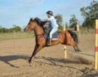 Haras Velate abre oficialmente seu Centro Equestre em Osório