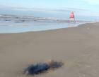 Identificadas vítimas de duplo homicídio na beira mar
