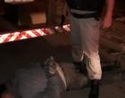 Assaltante de banco é preso escondido em caçamba de caminhão no Litoral Norte