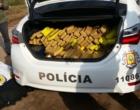 Após perseguição, mais de 120 quilos de maconha são apreendidos no Litoral Norte