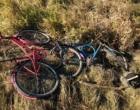Ciclistas são atingidos por veículo na Estrada do Mar em Osório
