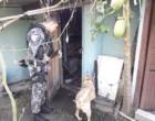 Ação conjunta prende traficantes em vários pontos da cidade de Osório
