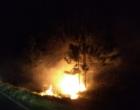 Bombeiros controlam incêndio as margens da Estrada do Mar
