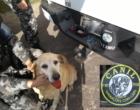 Doença e cirurgia antecipam aposentadoria de Lola, cão de faro mais famoso do 8º BPM