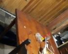 Homem é executado a tiros dentro de residência em Capão da Canoa
