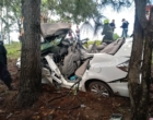 Veículo colide em árvores às margens da Estrada do Mar