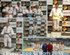 Judô de Osório participa de competição em Campo Bom
