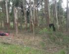 Acidente com moto mata mulher e deixa homem gravemente ferido em Osório