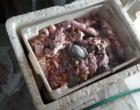 Peixaria clandestina tem proprietário preso em mais ação da FT Segurança Alimentar
