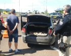 PRF prende quase 100kg de maconha na BR-101