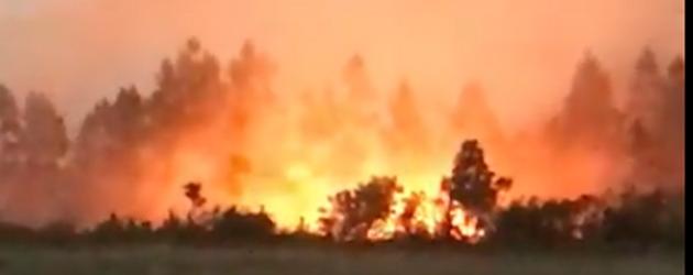 Após 11 horas, bombeiros controlam incêndio de grandes proporções em Osório