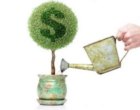 Relação com o dinheiro e as Barras de Access: elimine comportamentos negativos com toques na cabeça